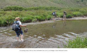 Photo of field season creek crossing