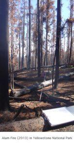 Photo of Alum Fire