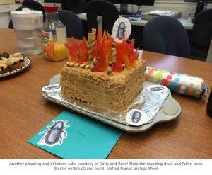 Photo of Brian's cake