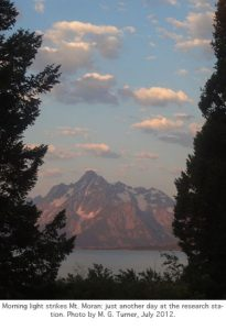 Photo of Mount Moran in the morning