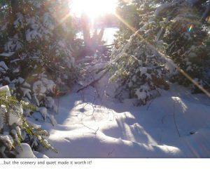 Photo of skip trip snowscape